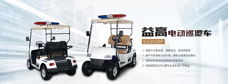 EG2028P