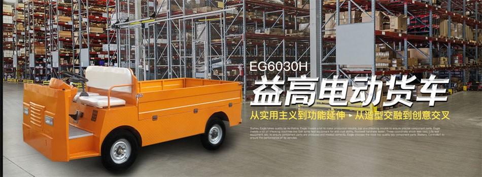 EG6030H